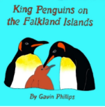 King Penguins of the Falkland Islands